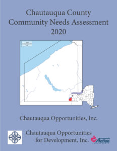 Community Needs Assessment 2017